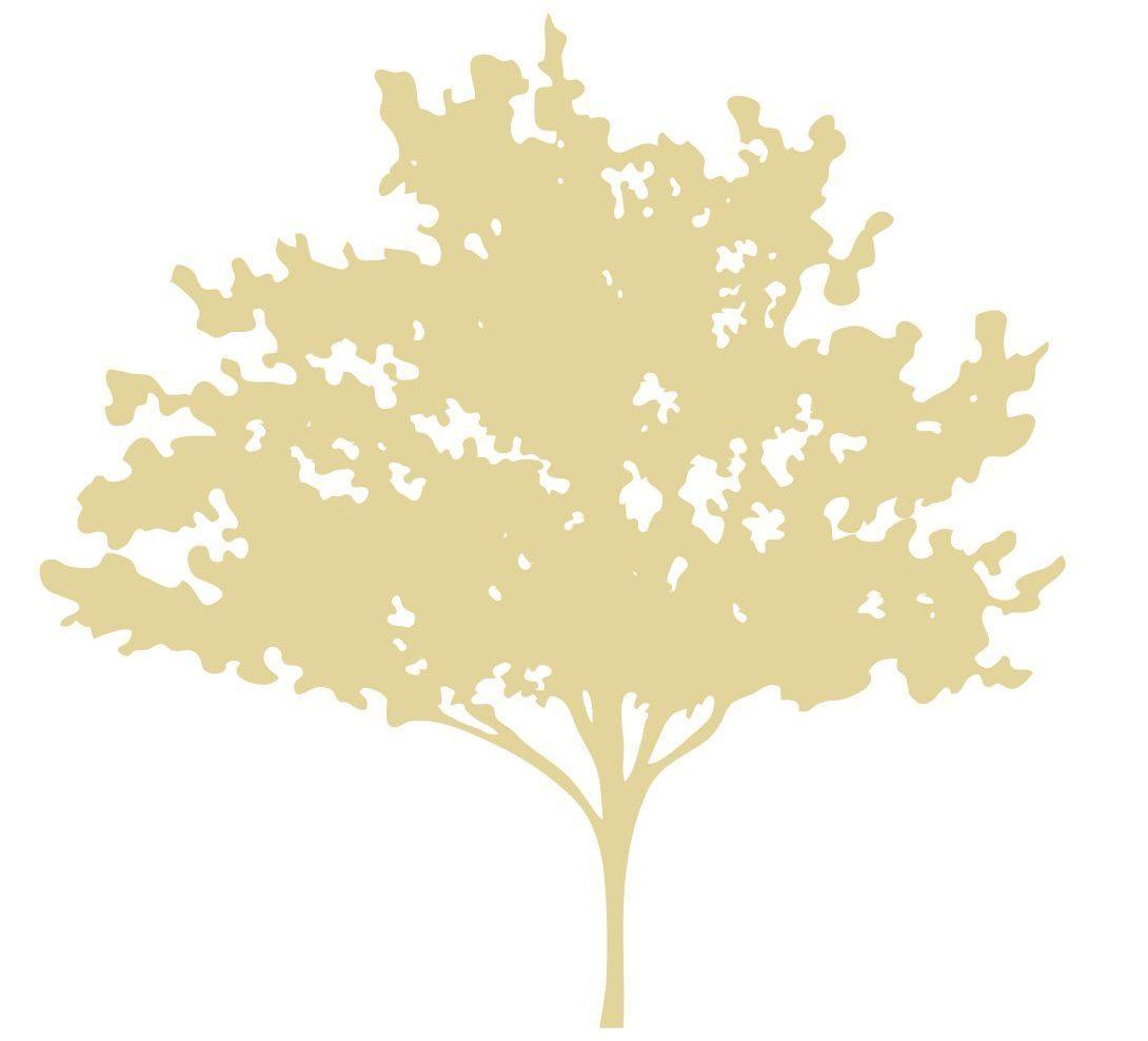 The Mindfulness Tree